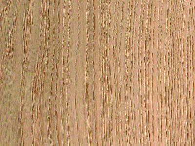 Aerdenhout Stroken 15 - Natuur eiken