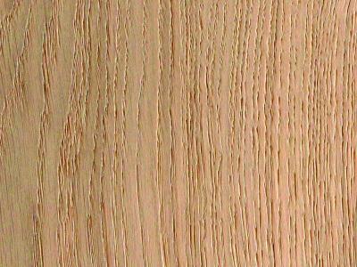 Aerdenhout Stroken 10 - Natuur eiken